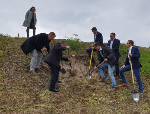 CDU-Kreistagskandidaten pflanzen Mandelbaum in Ihringen