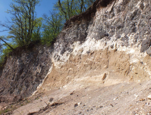 Bildvortrag: Besondere Vulkangesteine und Mineralien des Kaiserstuhls