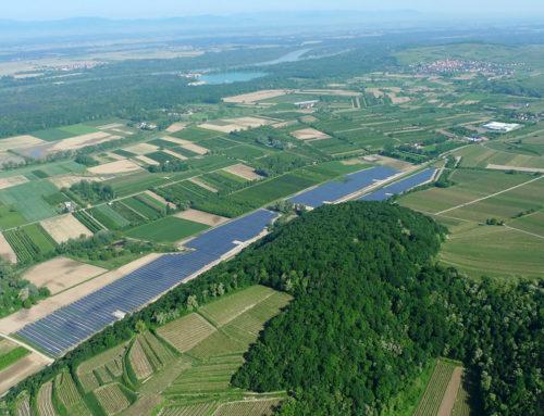 Vogtsburger Solarpark schüttet wieder Dividende aus